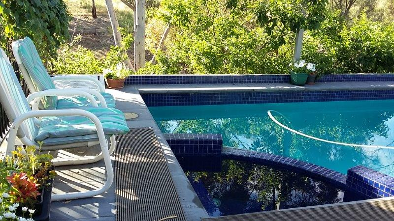 New elevated concrete pool : Adelaide Foot-Hills: Architect Grant Lucas